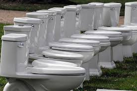 Lawn of toilets
